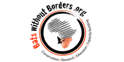 Bats without Borders