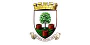 Wells City Council